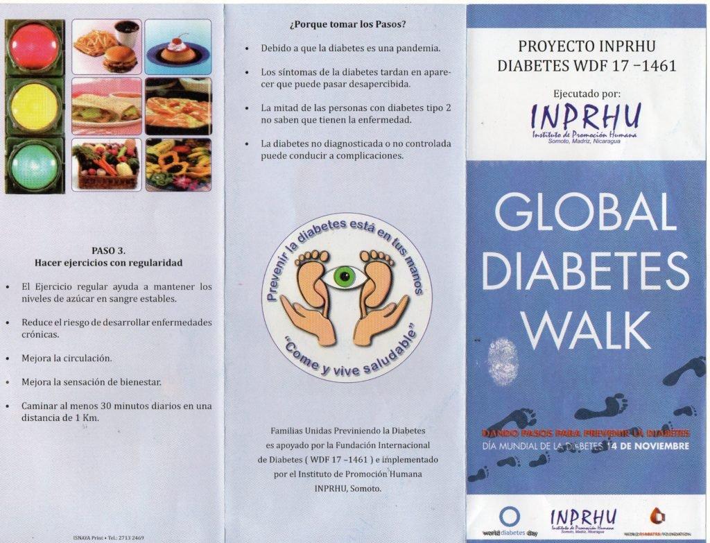 modelo ecológico de flujo de diabetes para la salud